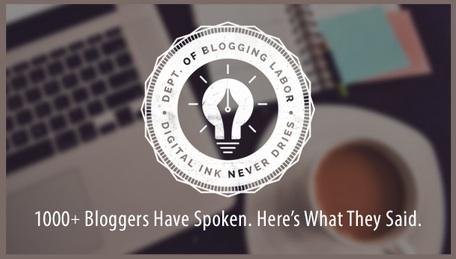 Blogger Survey-Orbit Media-1-2