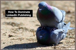 How to Dominate LinkedIn Publishing
