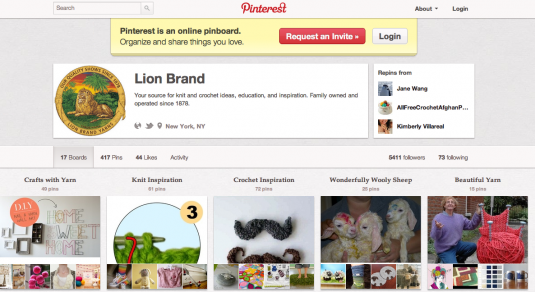 Show your product in photos on Pinterest -Lion Brand