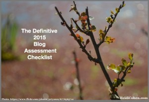 Definitive 2015 Blog Assessment Checklist