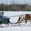 Pull prospects in -horse drawn sleigh