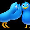 Twitter gossip_birds