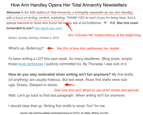 Ann Handley's Total Annarchy Newsletter