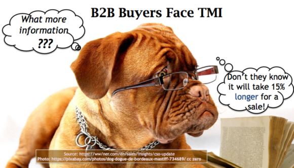 New B2B Purchase Process Creates B2B Buyers TMI
