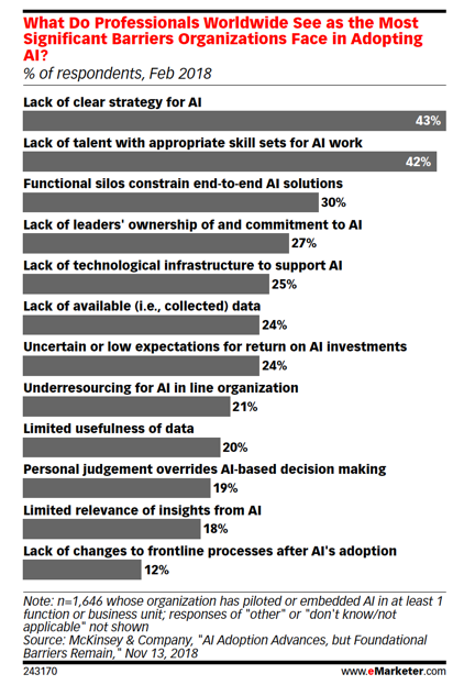what do professionals worldwide see as the most significant barriers organizations face in adopting AI