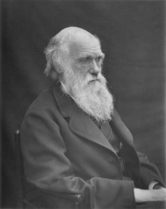 Charles Darwin and the evolution of content marketing