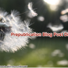 Prepublication Blog Post Distribution
