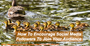 Encourage Social Media Followers To Join Your Audience