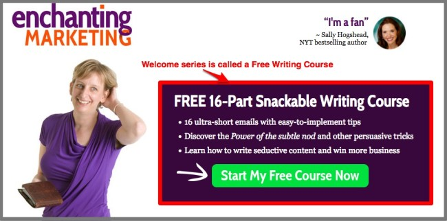 Henneke Duistermaat's Welcome Email Series dubbed Free Training