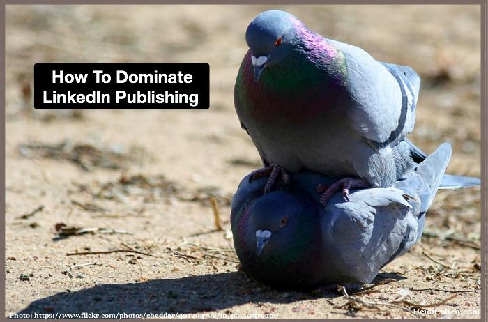 How to Dominate LinkedIn Publishing