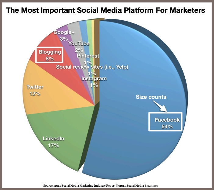 Most Important Social Media Platform For Marketers-SOcial Media Examiner-2014-1