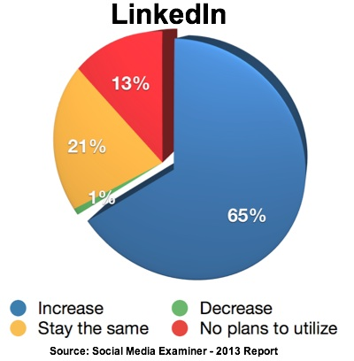 Report-2013-LinkedIn Use