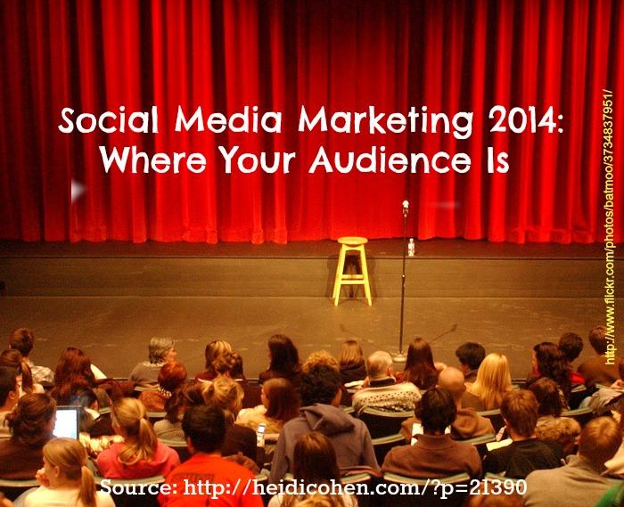 Social Media Audience 2014