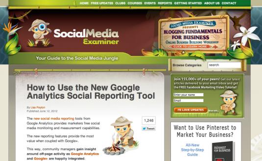 Social Media Examiner Branding