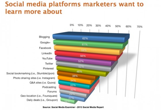 Social Media Examiner Report-2013-What Marketers Want to Learn