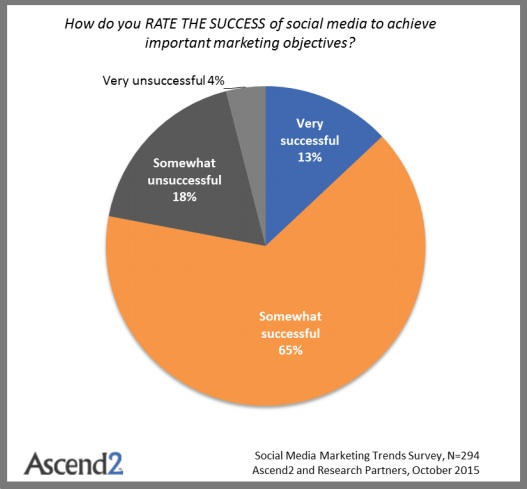 Social Media Marketing Success (Chart)