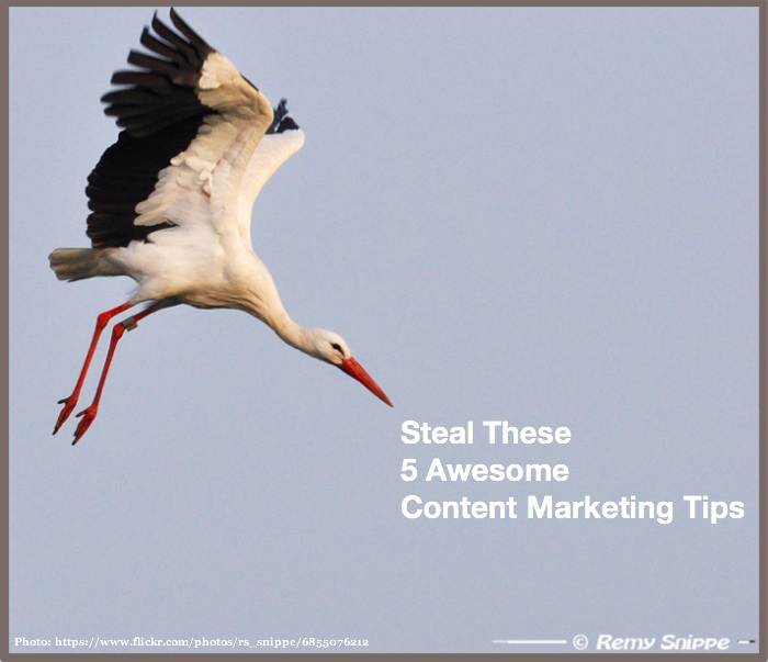Steal These 5 Awesome content marketing tips