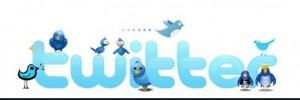 Twitter icon -fake followers