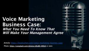 Voice Marketing Business Case