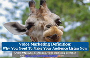 Voice Marketing Definition: Why You Need To Make Your Audience Listen Now
