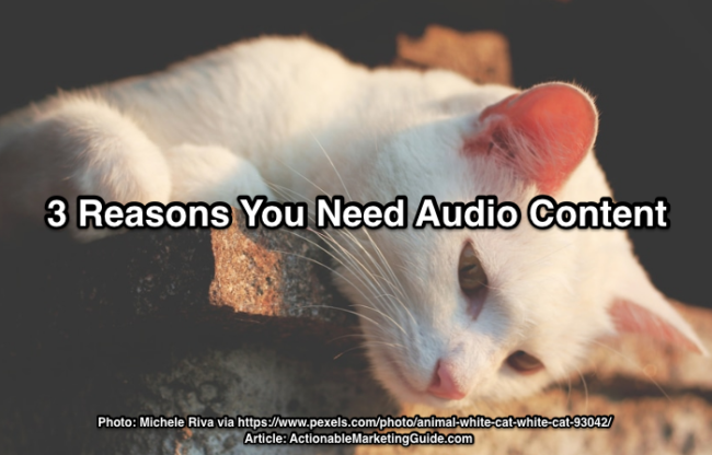 Cat listening to audio content