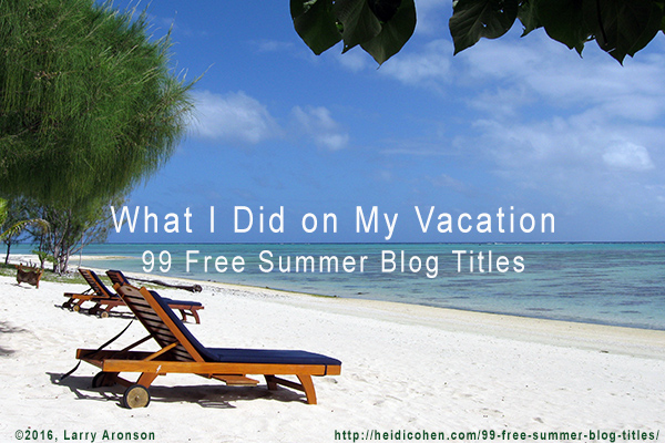 what i did on my vacation summer blog titles heidi cohen summer blog titles