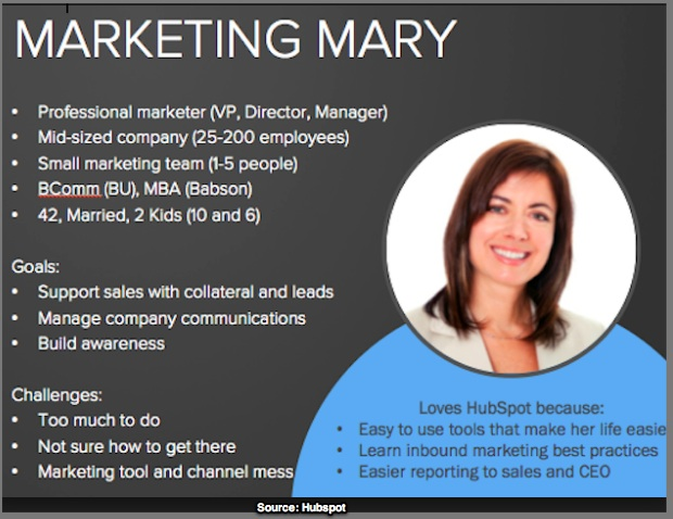Sample of a marketing persona via Hubspot